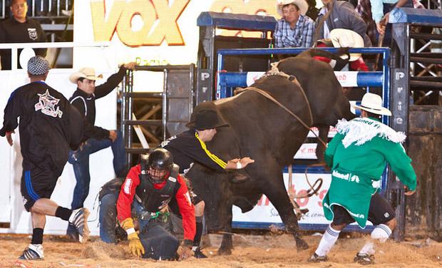 Braham-super-bull-brasil-pbr-rodeio-2