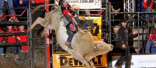 Braham-super-bull-brasil-pbr-rodeio